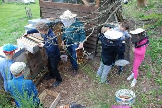 4. schůzka - Konečně u včel!